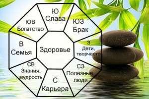 Восьмиугольник БА-ГУА - зоны помещения