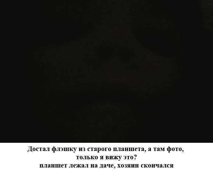 Підбірка прикольних фото №1104 (100 фото)