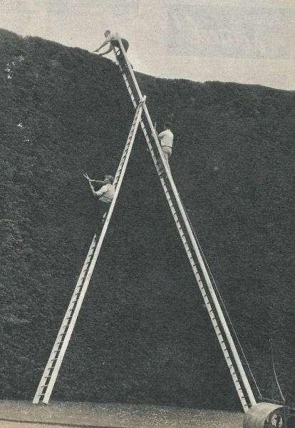 Підбірка прикольних фото №1105 (104 фото)