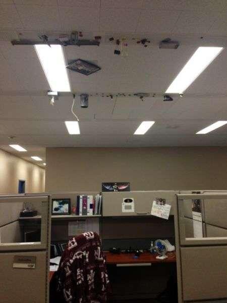 Чому ми ненавидимо свою роботу (40 фото)