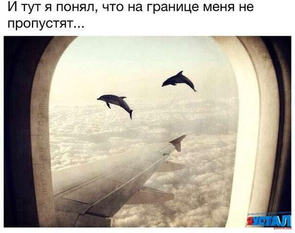Смішні картинки з написами (41 фото)