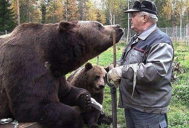 Де-то в Росії (6 фото)