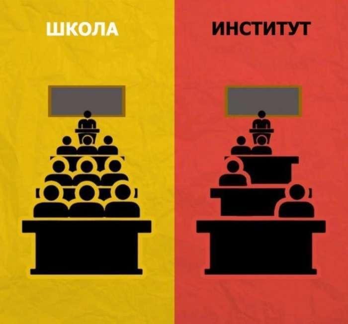Школа vs інститут (8 фото)